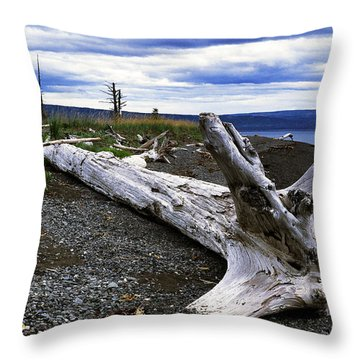 Driftwood On Beach Throw Pillow by Thomas R Fletcher