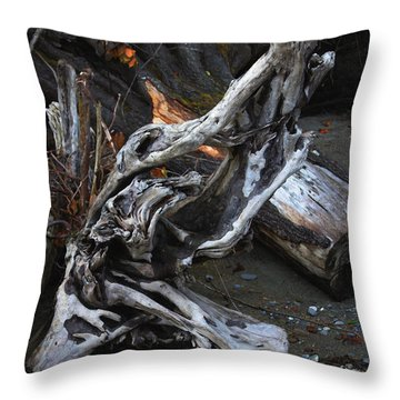 Driftwood On The Beach Throw Pillow by Tom Janca