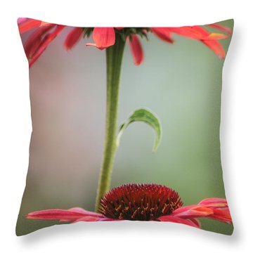 Duo Throw Pillow by Jacqui Boonstra