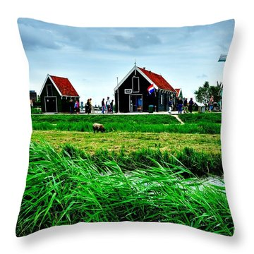 Throw Pillow featuring the photograph Dutch Village by Joe  Ng