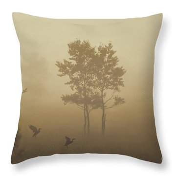 Early Morning Canaan Valley Throw Pillow by Dan Friend