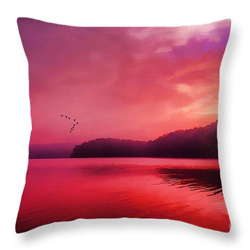 Early To Rise Throw Pillow by Darren Fisher