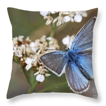 Eastern Baton Blue  Throw Pillow by Amos Dor