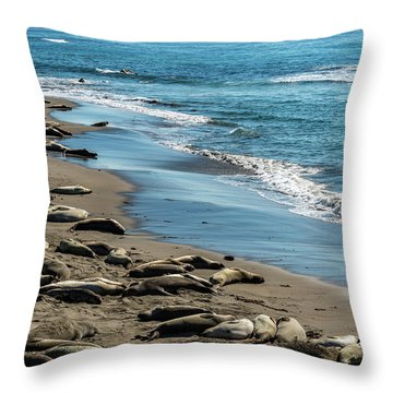 The Rookery Throw Pillows