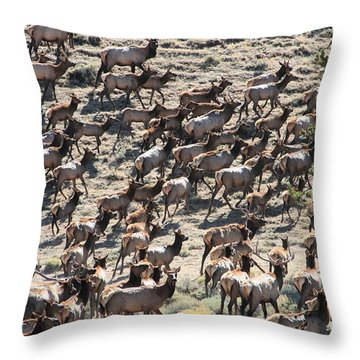 Elk Herd Throw Pillow