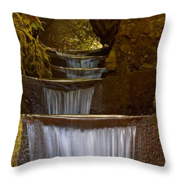 Endless Waterfall Throw Pillow by Lara Ellis