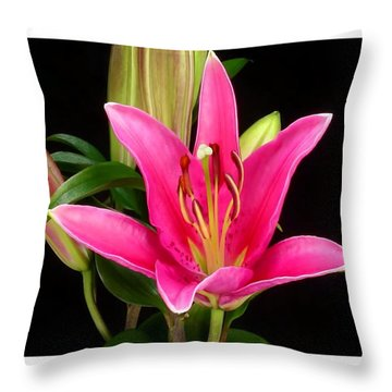 Erotic Pink Purple Flower Selection Romantic Lovely Valentine's Day Print Throw Pillow by Navin Joshi