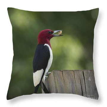 Evening Snack Throw Pillow by Cris Hayes