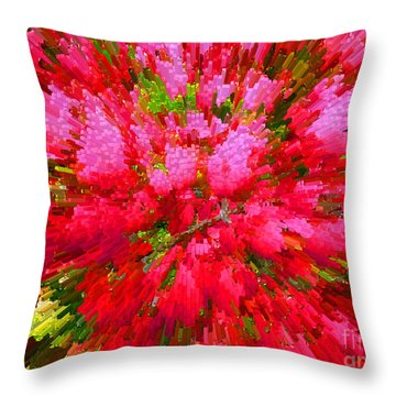 Explosion Of Spring Throw Pillow by Alys Caviness-Gober