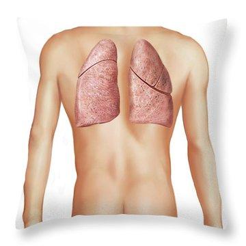 Internal Organs Throw Pillows