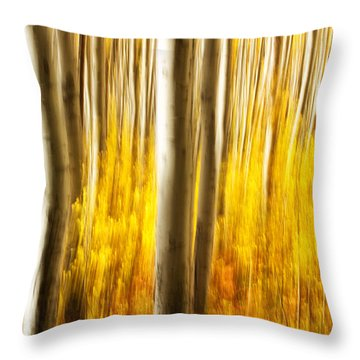 Throw Pillow featuring the photograph Fall Abstract by Ronda Kimbrow