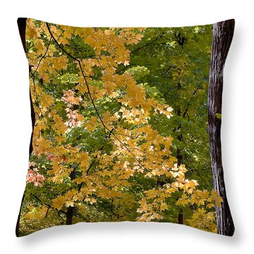 Fall Maples Throw Pillow