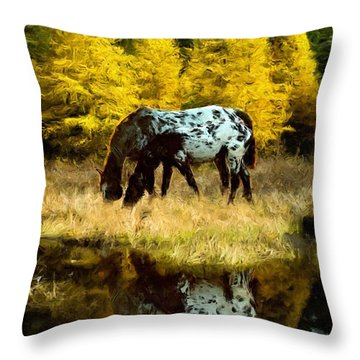 Fall Reflections Throw Pillow by Roger D Hale