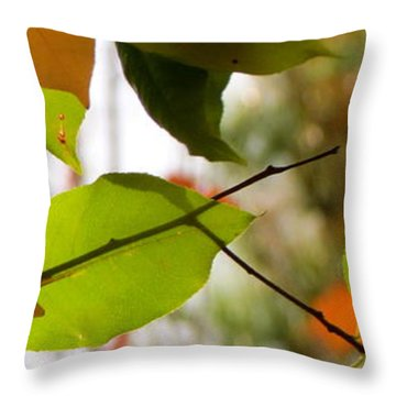 Famous Fall 9 Throw Pillow by France Laliberte