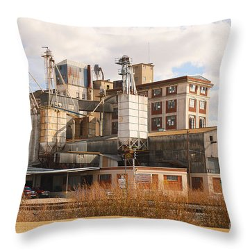Feed Mill Throw Pillow by Charles Beeler