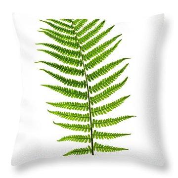 Fern Leaf Throw Pillow