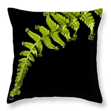 Fern With Raindrop Throw Pillow by Trevor Chriss