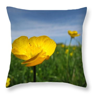 Field Of Buttercups Throw Pillow by Matt Taylor