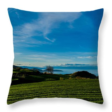 Field Of Tea Throw Pillow