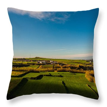 Fields Of Green And Yellow Throw Pillow