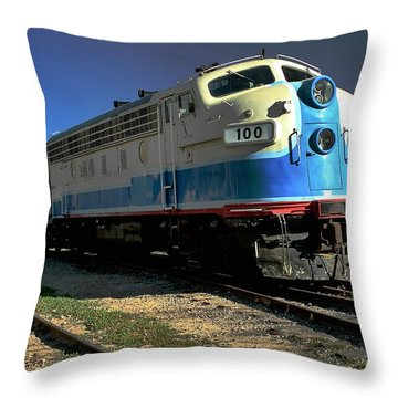 Throw Pillow featuring the photograph Fillmore 100 by Michael Gordon