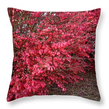 Throw Pillow featuring the photograph Fire Bush by Pete Trenholm