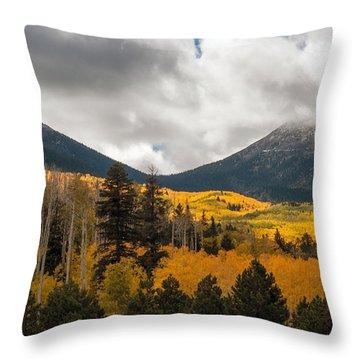 Flagstaff Fall Color Throw Pillow
