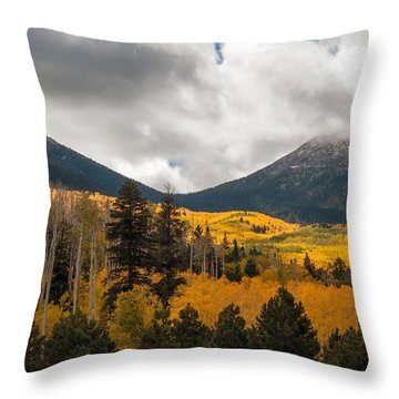Flagstaff Fall Color Throw Pillow