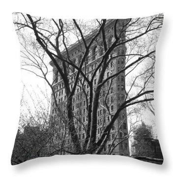 Flat Iron Tree Throw Pillow