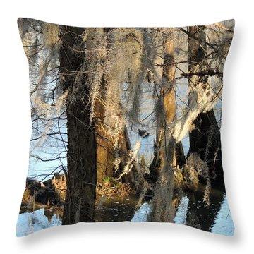 Flint River 36 Throw Pillow