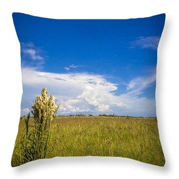 Florida Flat Land Throw Pillow