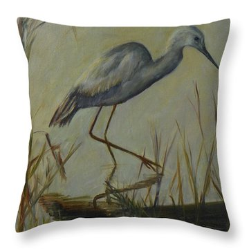 Florida Native Bird On A Fall Morning Throw Pillow