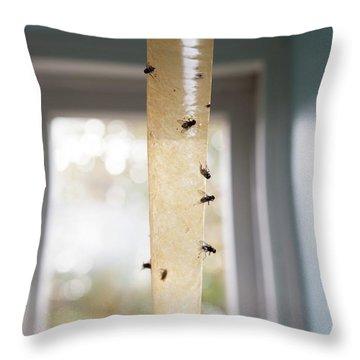 Housefly Throw Pillows