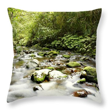 Forest Stream Throw Pillow by Les Cunliffe