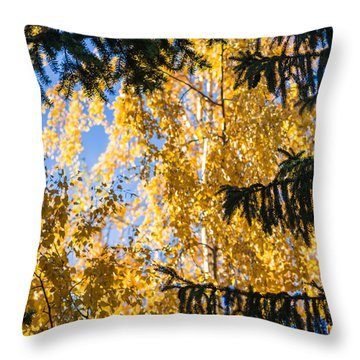 Forest Tale - Featured 3 Throw Pillow