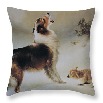 Found Throw Pillow