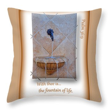 Throw Pillow featuring the photograph Fountain Of Life by Larry Bishop