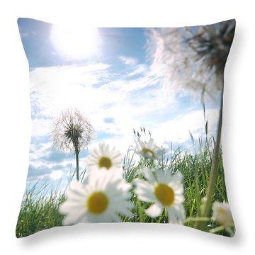 Fresh Meadow Background Throw Pillow by Michal Bednarek