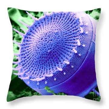Freshwater Diatom, Sem Throw Pillow by Asa Thoresen