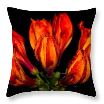 From The Blackness Throw Pillow