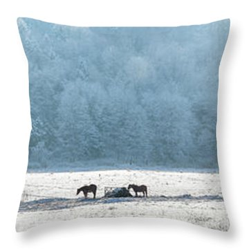 Frosty Morning Throw Pillow by Bill Wakeley