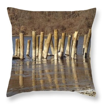 Throw Pillow featuring the photograph Frozen Pilings by Michael Porchik