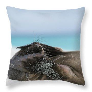 Galapagos Islands Throw Pillows