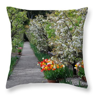 Throw Pillow featuring the photograph Garden by Haleh Mahbod