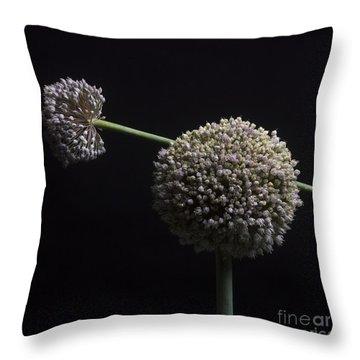 Garlic Flowers. Allium. Throw Pillow