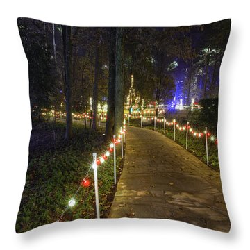 Long Path Throw Pillow