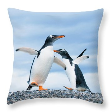 Penguin Throw Pillows