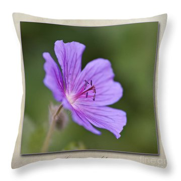 Geranium Maculatum Throw Pillow by John Edwards