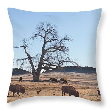 Give Me A Home Where The Buffalo Roam Throw Pillow by James BO  Insogna