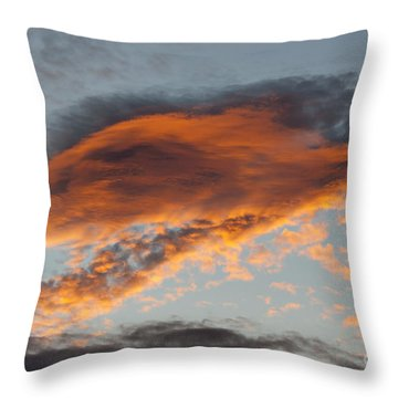 Gloaming Throw Pillow by Michal Boubin